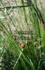 Secret letters // Seulrene by sseulgom