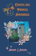 Légendes Garantissant Batailles et Trésors 4 - Les Contes des Princes Amoureux by Aodael