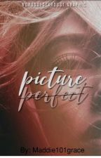 Picture Perfect  by Maddie101Grace