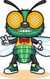 The Annoying Fly by Shadowspuppy