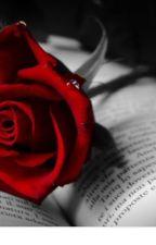 A Single Rose  by JSewall