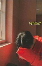 harimu?ㅡminV by babigesit
