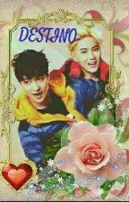 DESTINO by user53399360