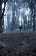 Don't go into the woods, love by voiceless