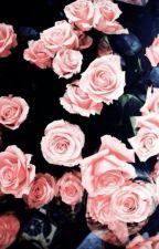 [Edit] [OnKey] Trăm hoa by camominle