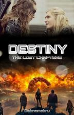 Destiny: The Lost Chapters  by debnamskru