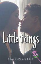 Little Things. (Español) by SweetTears1444