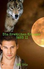 Die Erwählten Krieger II by RWDTris