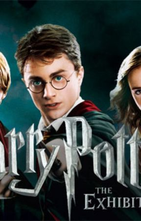 Harry Potter fakta by safimary