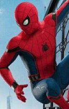 Spiderman/Peter Parker X Reader by SpideyManSpiderFan