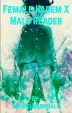Female Harem x Male Reader  by Riddler478