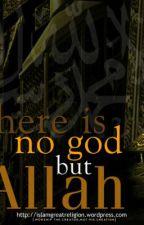 NO god but Allah! by ishu786