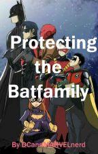 Protecting the Batfamily by DCandMARVELnerd