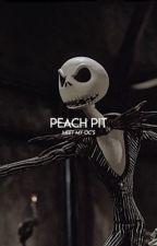 PEACH PIT   【☆】    meet my ocs by falconisms