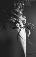 Le Carnet de Silia (pas fini) by lune_17