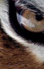 El ojo del tigre by ProxuSmile