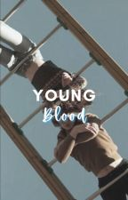 YOUNG BLOOD, PONYBOY CURTIS by windrixvilles
