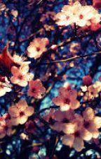 Para você Amor by LyriN_989