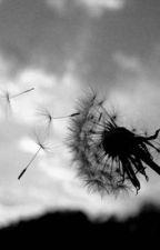 Dandelion  by Unbakedcrayon330