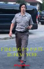 Finding my Mate  in New York ( A Reylo Romance ) by Reylogirlforever