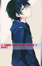 A Thorn Rose (Abused Male Reader X RWBY) by KouseiKasai