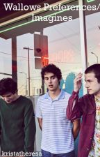 Wallows||Preferences and Imagines  by kristatheresa