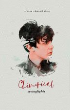 Chimerical [Edmund Pevensie] by seeinglights