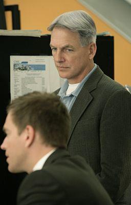 Gibbs dinozzo spank