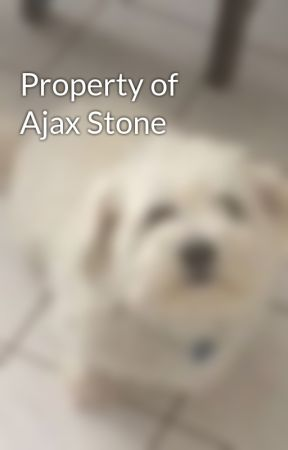 Property of Ajax Stone by Blue_Flame24