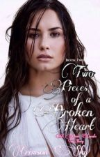 Two Pieces of a Broken Heart // Demi Lovato // 2 by crimson_x_sky