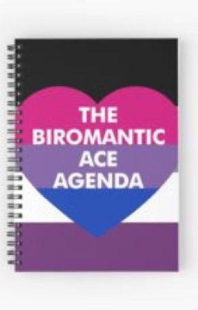 What is a heterosexual biromantic ace