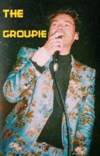 ☆THE GROUPIE☆ HARRY STYLES by Stephobigmac