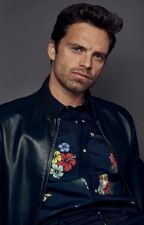 Sebastian Stan Imagines and Preferences by tinnie2003