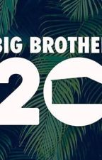 Big Brother 20 by brikeyandjichael_
