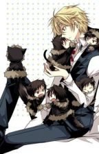 Ask or Dare Shizuo and Izaya by NafiChan