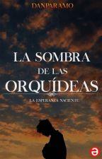 La Sombra de las Orquídeas© by Danparamo