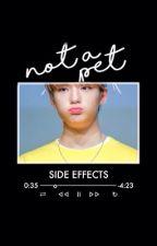 Not a Pet || • BTS FANFIC • [EDITING] by GraeBunny