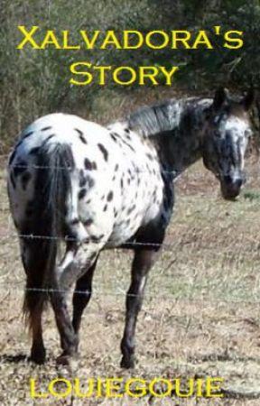 Xalvadora's Story by louiegouie