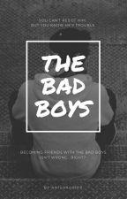 The Bad Boys by AnishaShips
