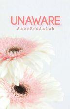 Unaware by SabrAndSalah