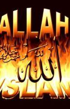 Basic Beliefs in Islam by ishu786