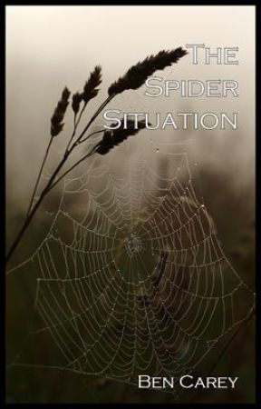 The Spider Situation by BenCarey