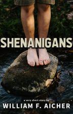 Shenanigans by BillAicher