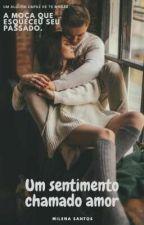 Um sentimento chamado amor by MilenaSantos1998