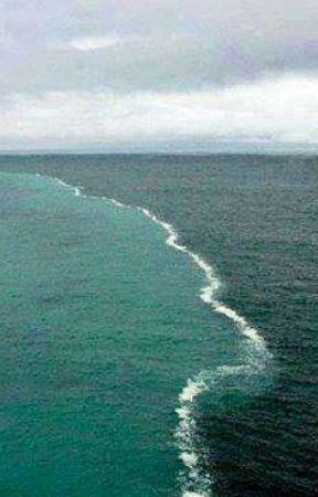 Golfo Do Alasca  by ChristianPan