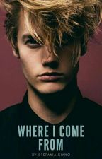 Where I Come From (Wattys2018) by stefy_stellina