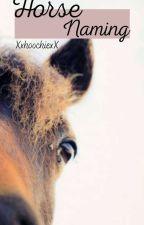 Horse Naming《open》 by XxhoochiexX