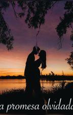 La promesse oubliée by wayni10