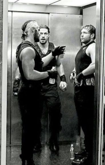 The Shield Preferences