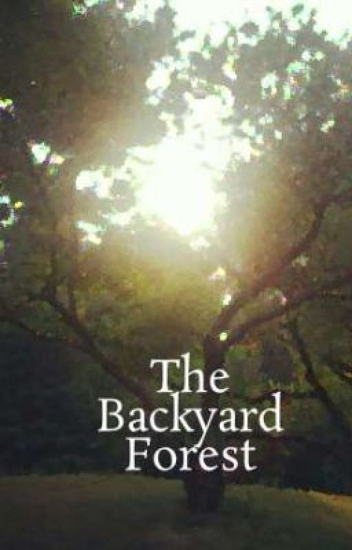 The Backyard Forest by haneef
